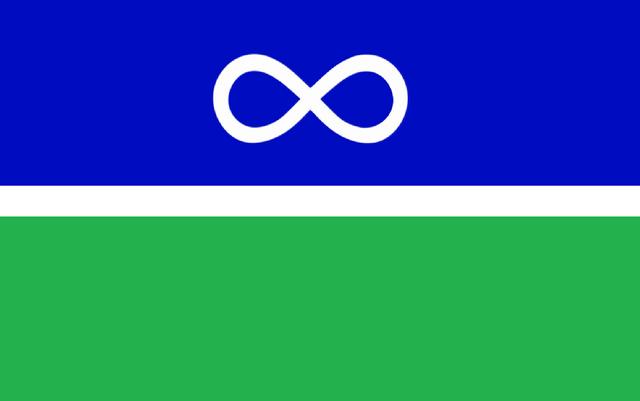 File:MB Flag Propopsal Robo-Diglet.png