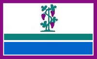 CT Proposed Flag VoronX 3