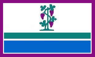 File:CT Proposed Flag VoronX 3.png
