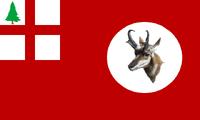 ID Flag Proposal Sammy
