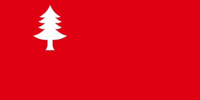 File:ME Flag Proposal Tibbetts.jpg