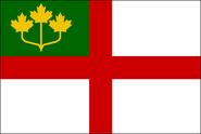 OT Flag Proposal BigRed618