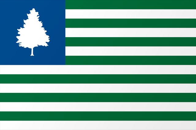 File:Proposed Flag of VT Steve Lovelace.png