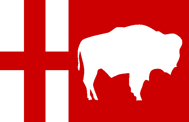 File:MB Flag Proposal Jack Expo.png