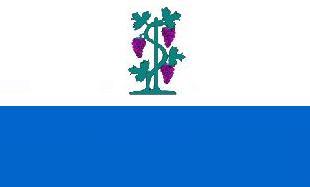 File:CT Proposed Flag VoronX 2.png