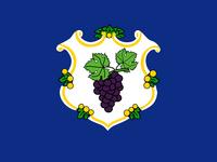CT Proposed Flag Bezbojnicul