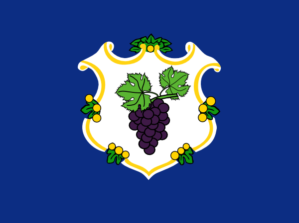File:CT Proposed Flag Bezbojnicul.png
