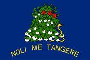 Alabama State Flag 1861 Reverse