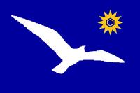 UT Flag Proposal Usacelt
