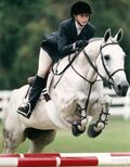B0824b1842e3b3a1a18480037b8ebed8-3-3-english-horseback-riding-lessons-Other-Services