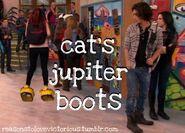 Catboots