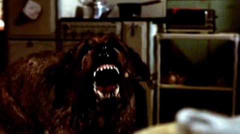 Cujo 25th Anniversary Edition (1983) - Home Video Trailer
