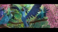 "Rio 2 - ""Welcome Back"" Clip"