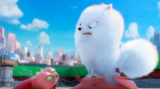 The Secret Life Of Pets Where Is Max?