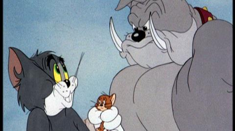 Tom and Jerry In The Dog House (2012) - Home Video Trailer for Tom And Jerry In The Dog House