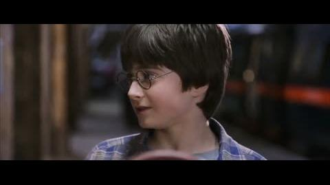 Harry Potter and the Sorcerer's Stone - The barrier