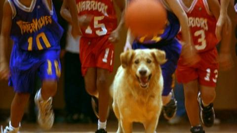 Air Bud Special Edition (1997) - CT 1