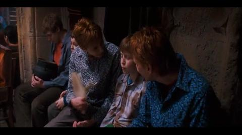 Harry Potter and the Order of the Phoenix - Harry's new scars