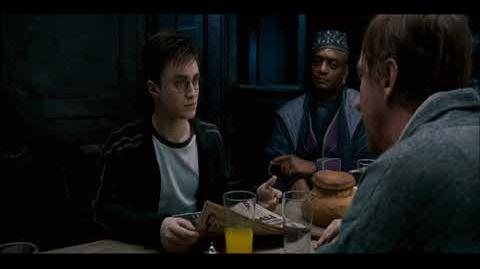 Harry Potter and the Order of the Phoenix - The Order of the Phoenix