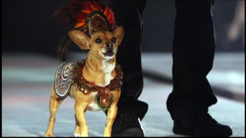 Beverly Hills Chihuahua 2 (2010) - Featurette Fun Facts 2
