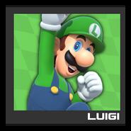 ACL Mario Kart 9 character box - Luigi