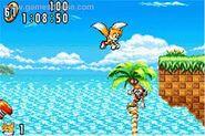 Sonic Advance 6