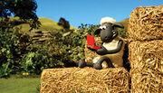 Shaun the Sheep Mario Reference