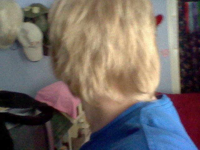 File:Hair 004.jpg
