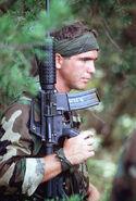 Colt Commando and SEAL