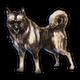 War Dog.png