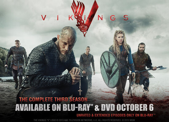 Vikings season 3 Blu-ray DVD promo poster 001
