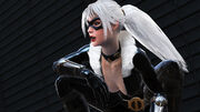 Black Cat (Web of Shadows)
