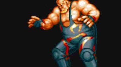 Fatal Fury - Raiden and Big Bear