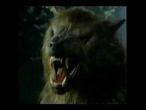 Donovan in his Werewolf Form