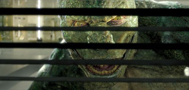 File:Lizard3.jpg