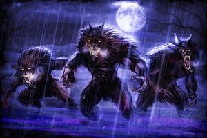The Werewolves