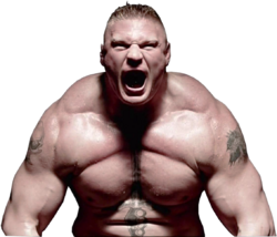 Brock Lesnar the beast