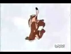 Wile E. Coyote Howling cartoon