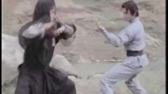Shaolin Challenges Ninja - Gordon Liu vs
