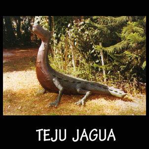 Museo mitologico ramon elias capiata teju jagua escultura portalguarani