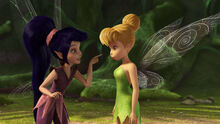 Vidia And Tinkerbell