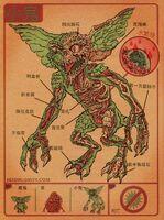 Gremlin anatomy