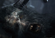 Huntsmen Bloodborne Face Eye