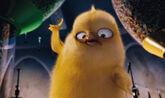 Hop-photo-carlos-chick3
