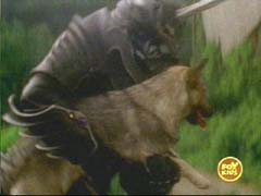 File:Zen-Aku rescuing Dog.jpg