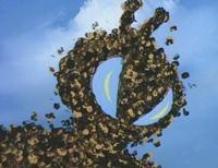 Swarm 1980s