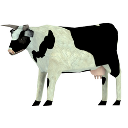Cow skin white 2 preview