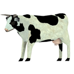 Cow skin white 1 preview