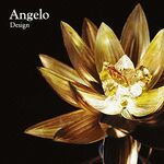 Angelo Design