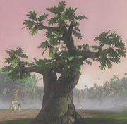 File:Oak.jpg